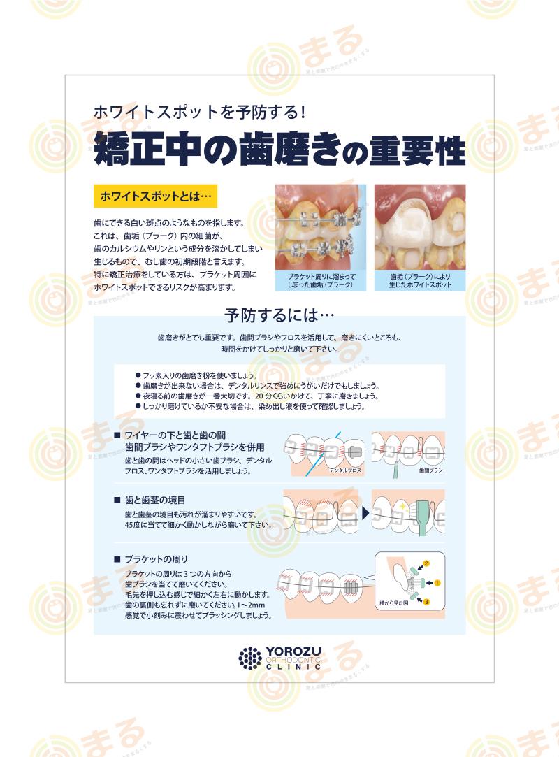 矯正歯科様の矯正中の歯磨き資料制作